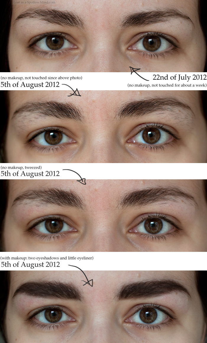 Castor Oil Hair Growth Eyebrows | www.pixshark.com ...