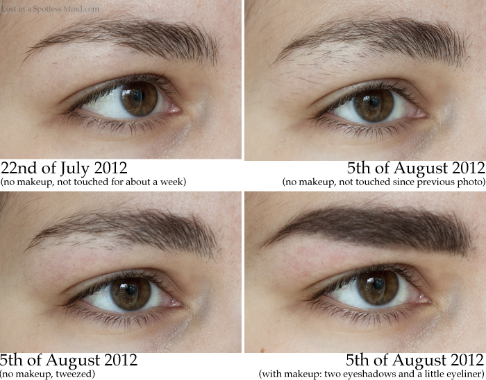 Eyebrow Growth Long Hairstyles