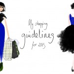 My shopping guidelines for 2013