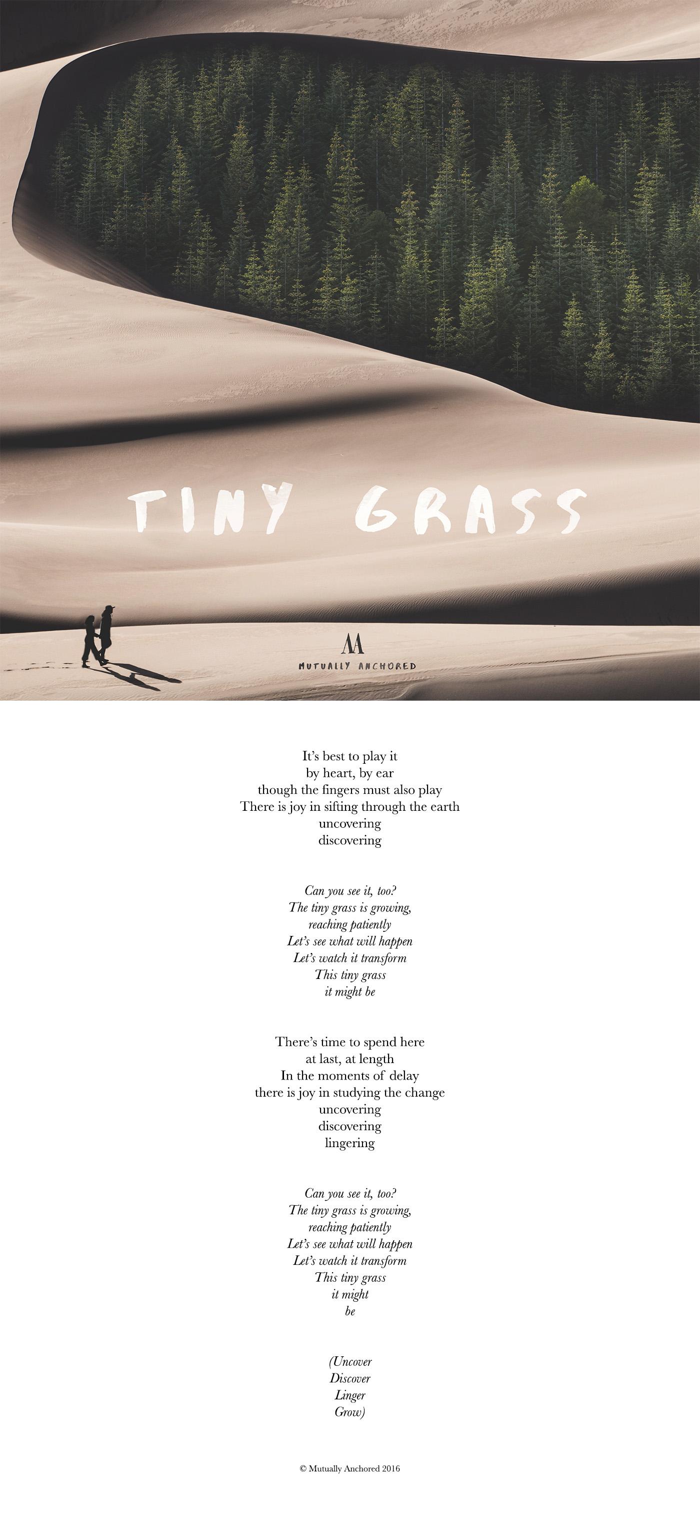 Mutually Anchored Tiny Grass lyrics